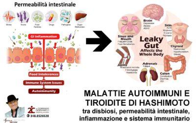 MALATTIE AUTOIMMUNI E TIROIDITE DI HASHIMOTO  tra disbiosi, permeabilità intestinale, infiammazione e sistema immunitario